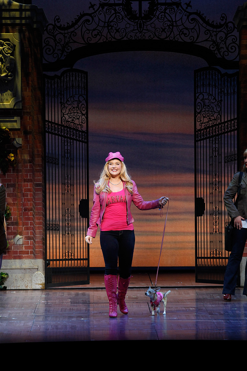 Legally Blonde The Musical Portland Ovations